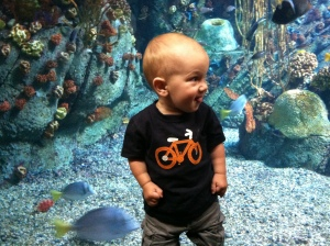 Long Beach Aquarium